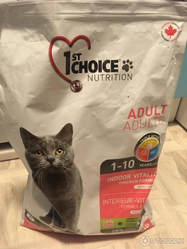 Питание 1st choice для кошек: состав и виды питания фест чойс, преимущества и недостатки