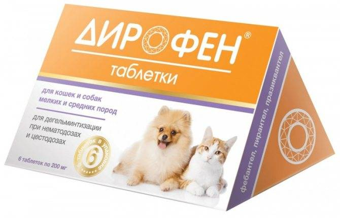 Дирофен для кошек: состав, форма выпуска, особенности применения