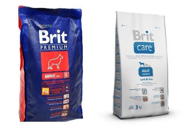 """""""брит"""", корма для собак - отзывы, особенности, состав и виды"""