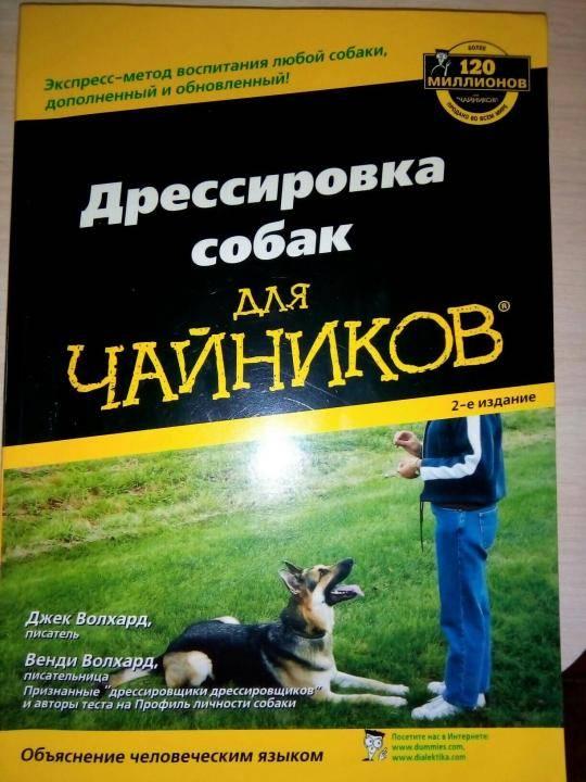 Воспитание и обучение взрослой собаки