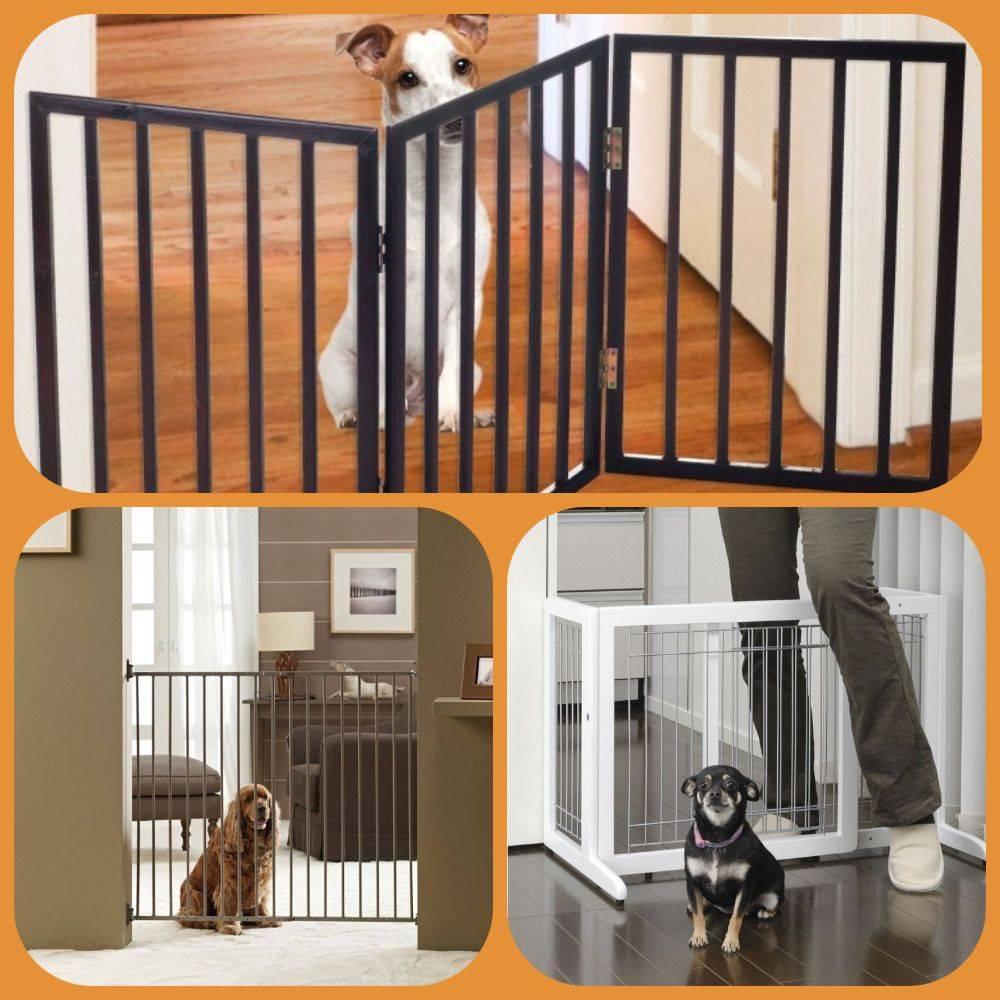 Выбираем вольер для собаки в квартиру