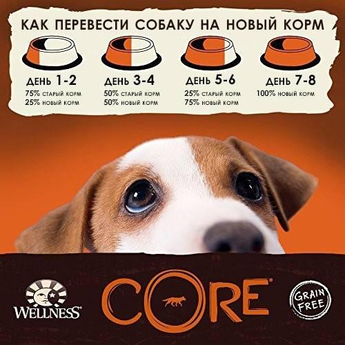 Как перевести собаку с сухого корма на натуральное питание