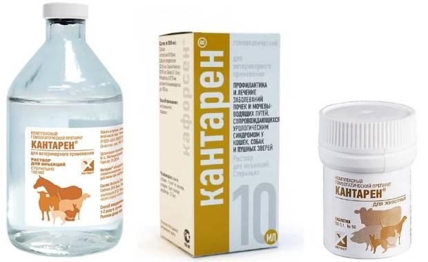 Противозачаточные таблетки для кошек   есть ли средства, название, цена, уколы