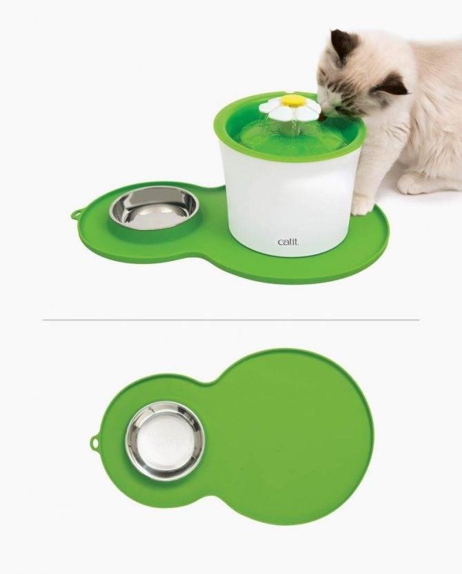 Автоматическая поилка: как выбрать полезное устройство для кошки