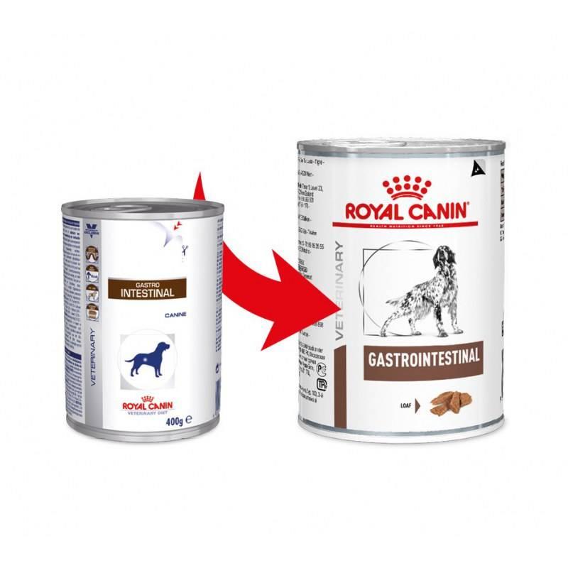 Royal canin – корм премиум класса от французского производителя