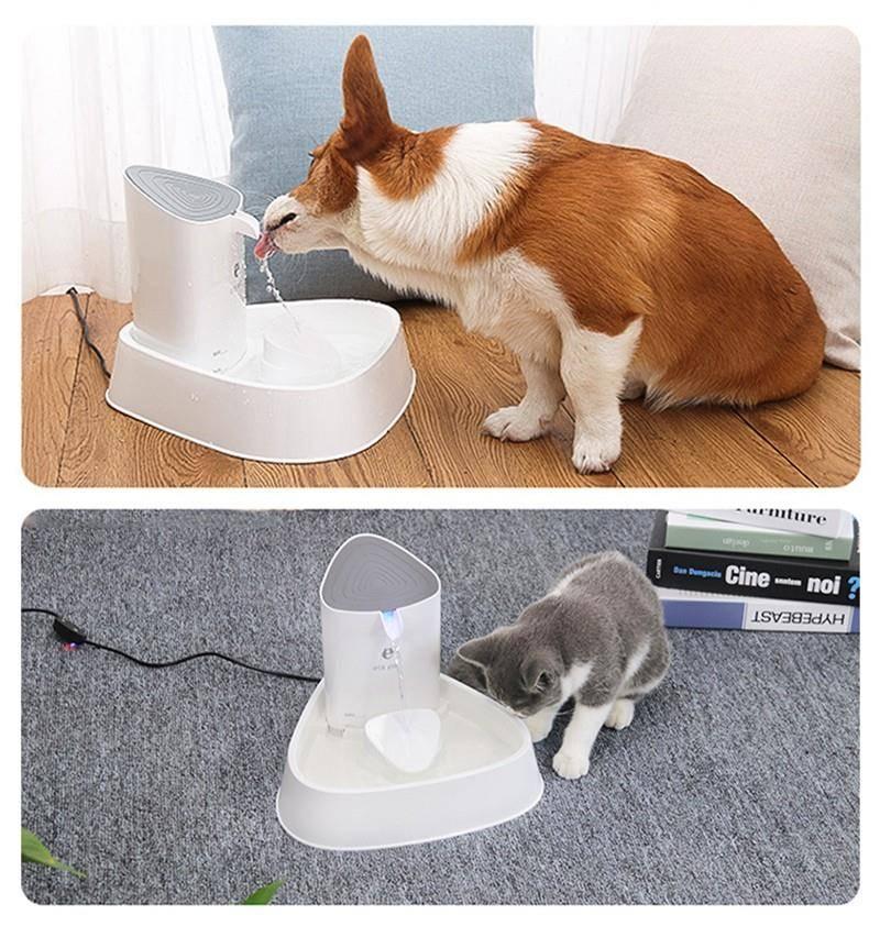 ᐉ поилка (фонтан) для кошек: рейтинг лучших 4, как сделать самому - zoogradspb.ru