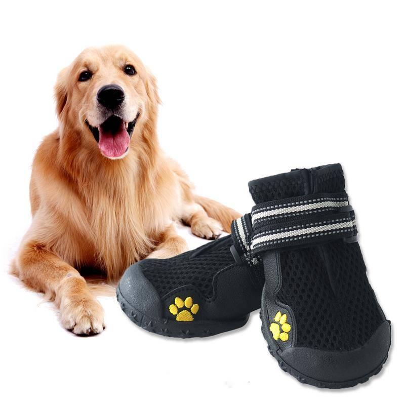 Обувь для маленьких собак — особенности
