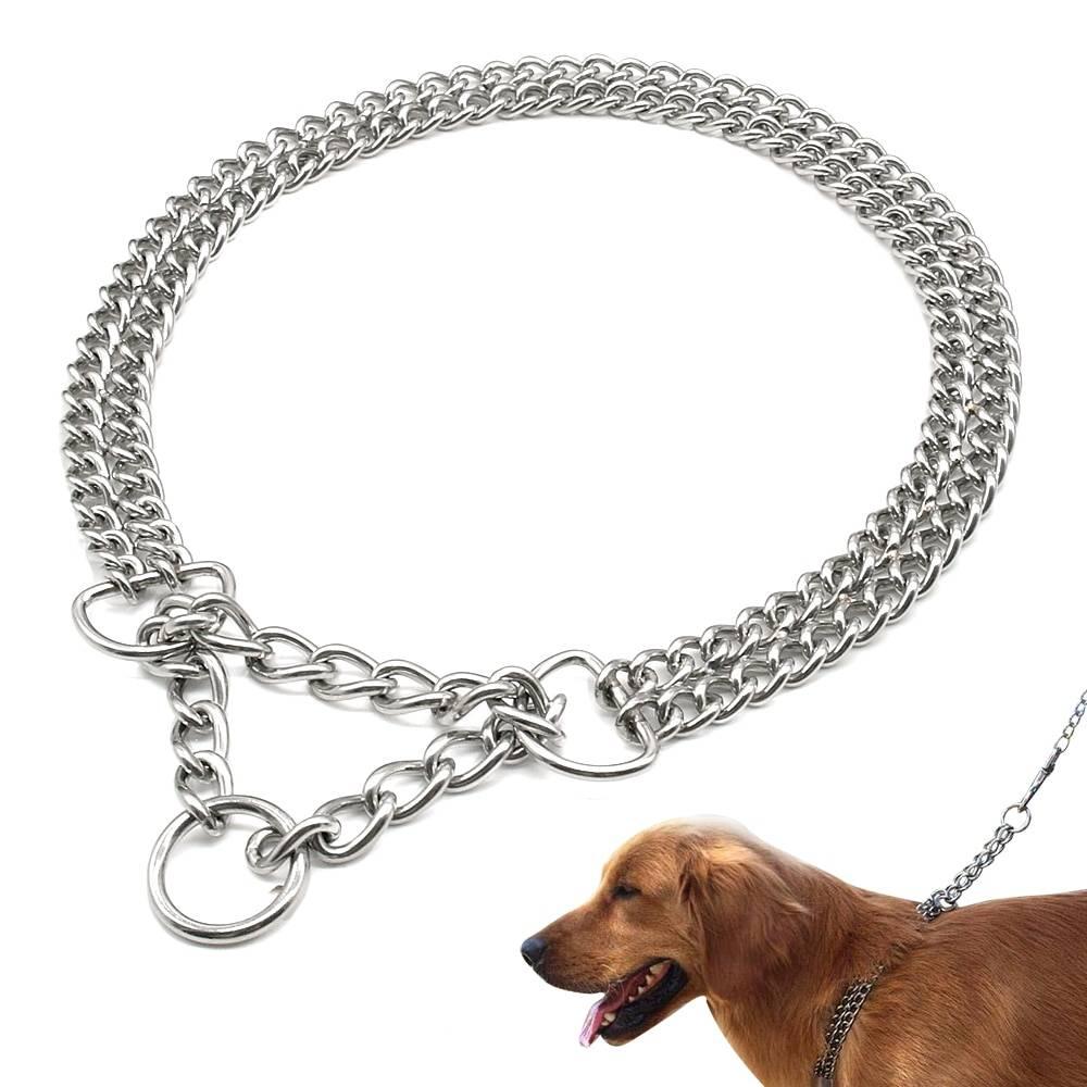 Строгие ошейники: виды, предназначение, правила использования во время дрессировки собаки