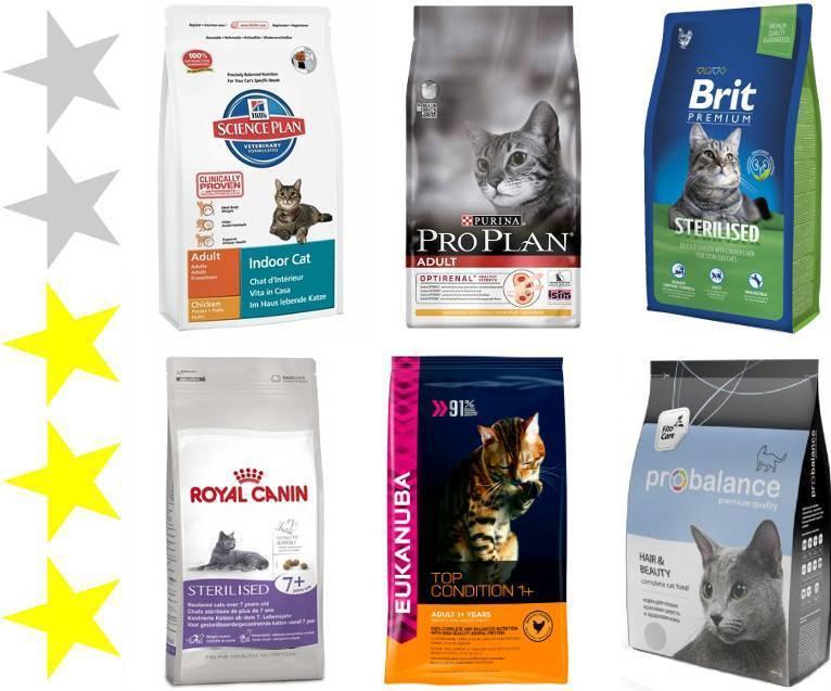 Сухой корм для кошек: обзор по видам, какой самый лучший по отзывам ветеринаров (рейтинг 2018)