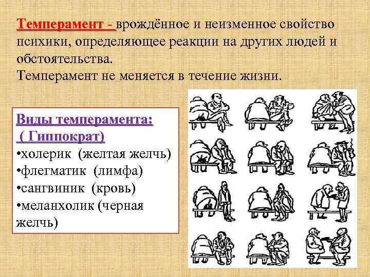 Бульмастиф. описание, цена и уход за бульмастифом