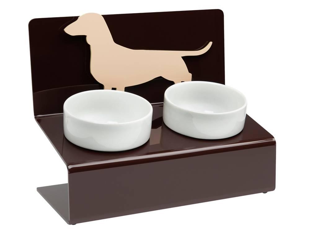 Как выбрать миску для собаки и сделать кормушку правильной и удобной.