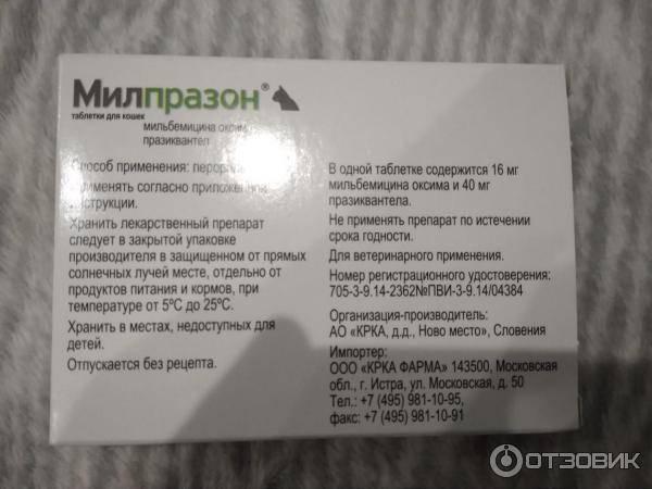 Антигельминтный препарат «милпразон»: как давать кошкам и котятам