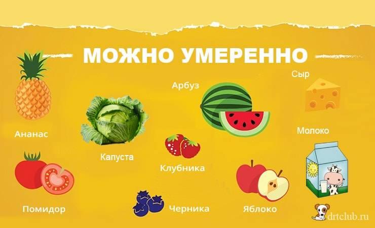 Какие овощи и фрукты можно давать собаке