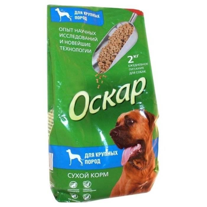 Обзор кормов для щенков и взрослых собак мелких пород и их разновидность
