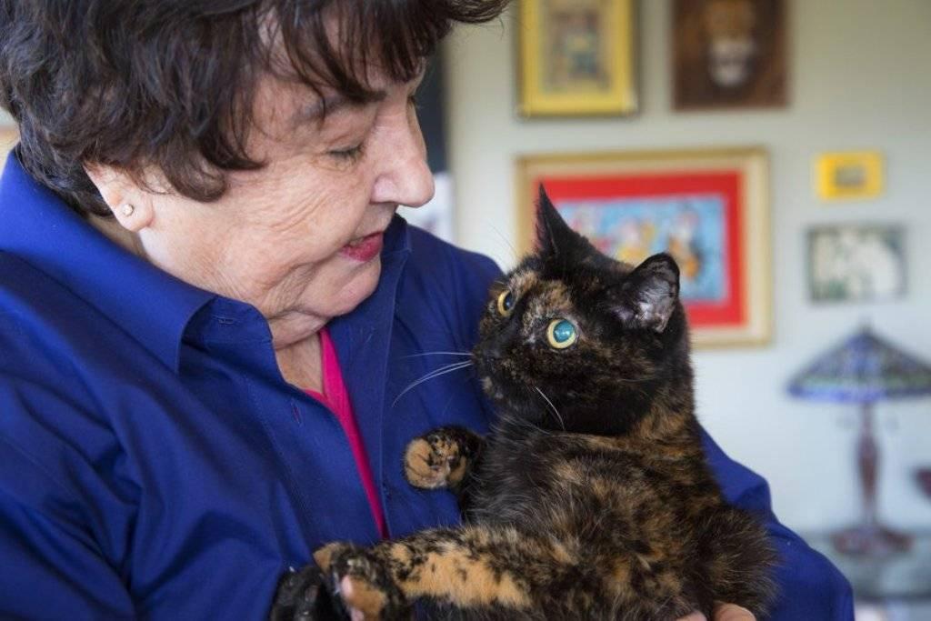 Самый старый кот в мире | 31 год, фото