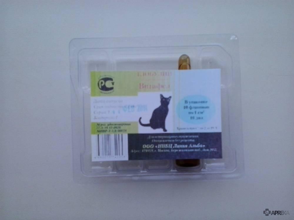 Витафел для кошек: инструкция по применению, отзывы