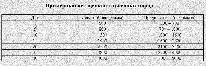 Стандарты и характеристики среднеазиатской овчарки алабай.