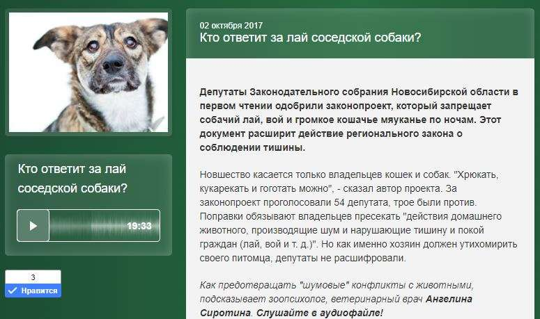 Почему собака воет дома или во дворе? как отучить от воя по ночам?