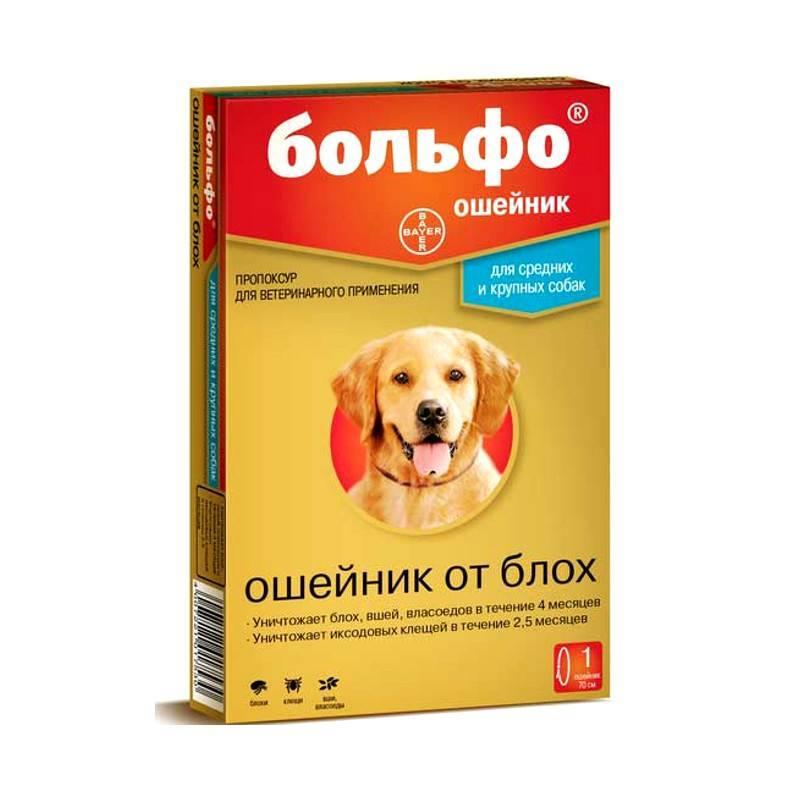 Помогает ли собакам ошейник против блох и клещей