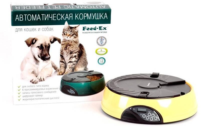 Автоматическая кормушка для животных: для чего нужна и как выбрать