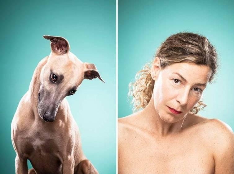 11 вещей, которые собаки ненавидят в общении с людьми — зачем человеку собака?