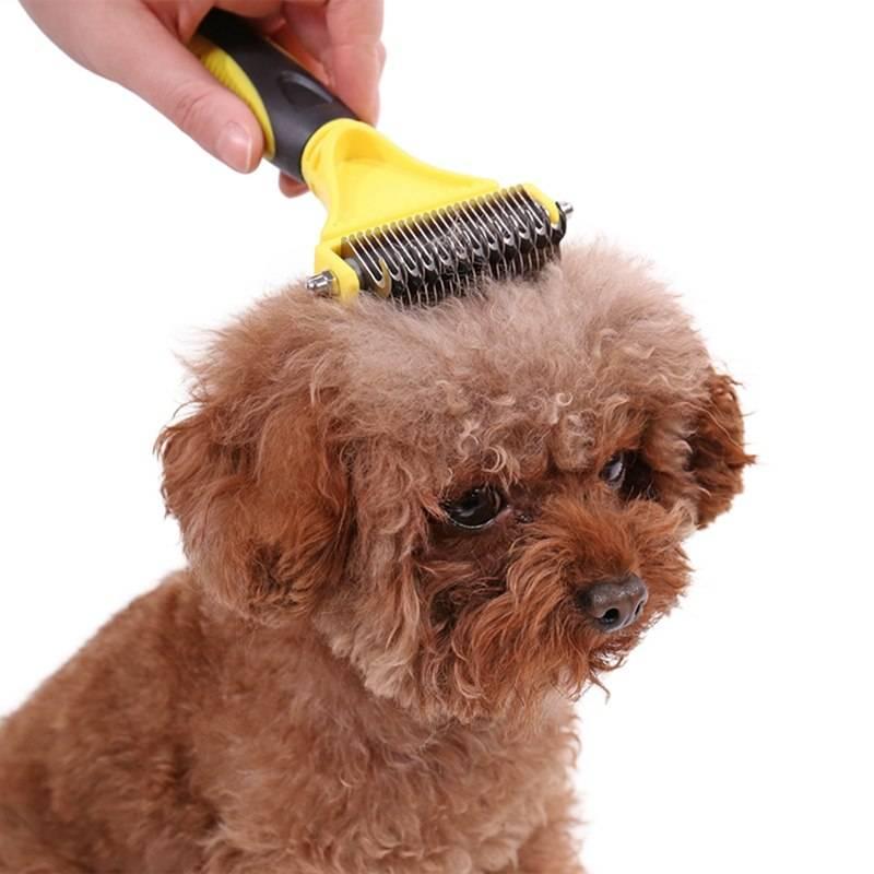 Инструменты для расчесывания и вычесывания собаки