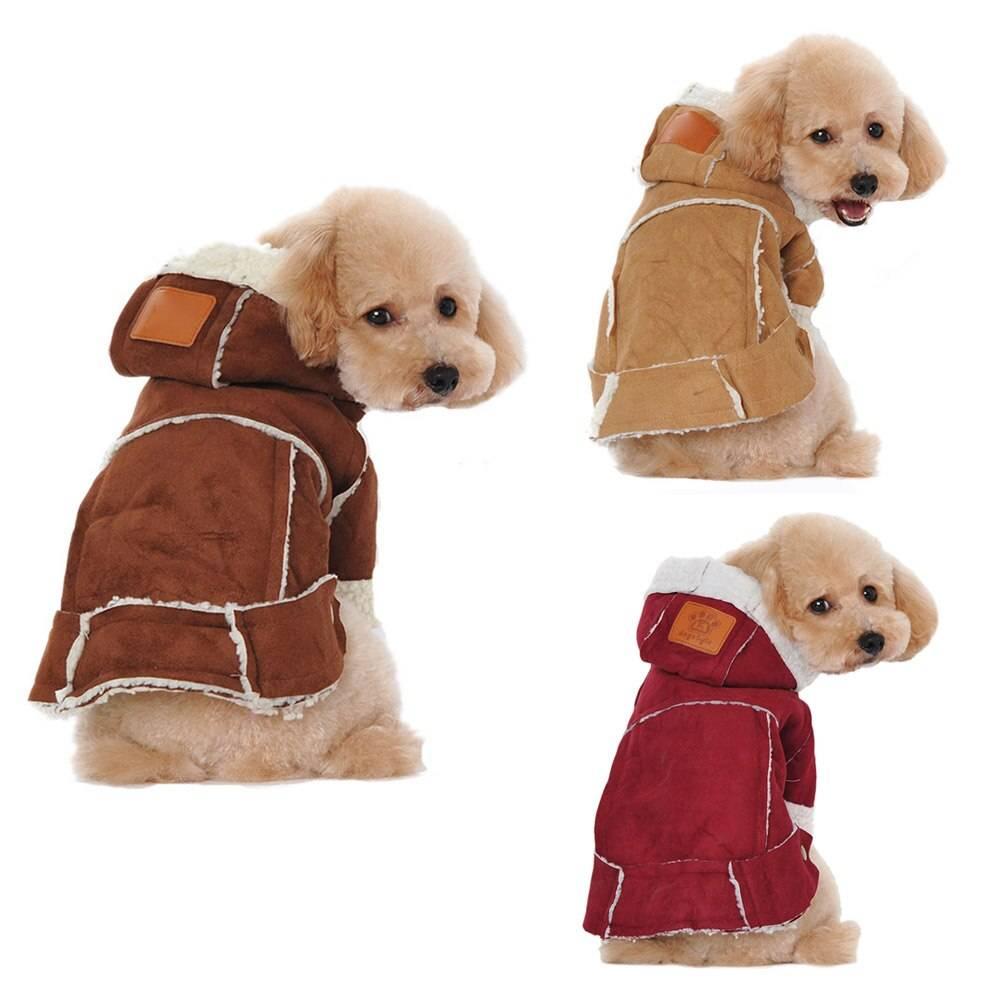 Выбираем одежду для маленьких собачек