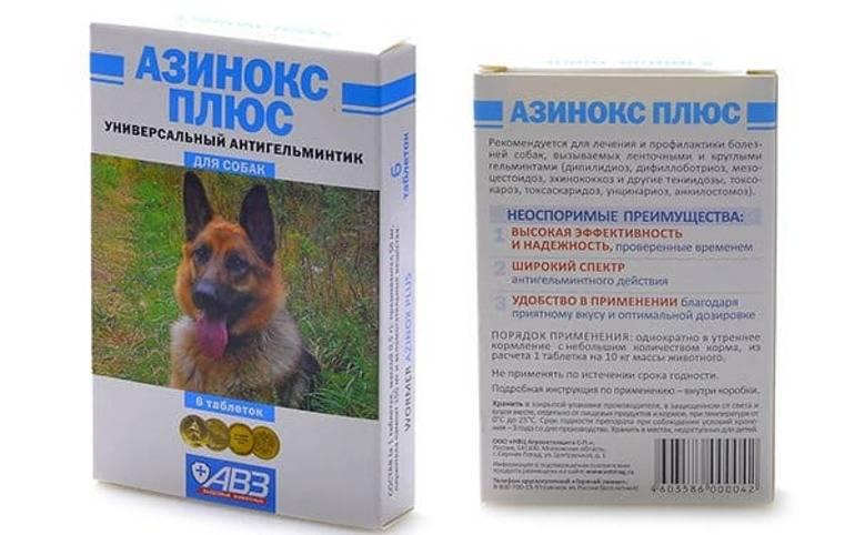 Азинокс плюс для собак: инструкция по применению