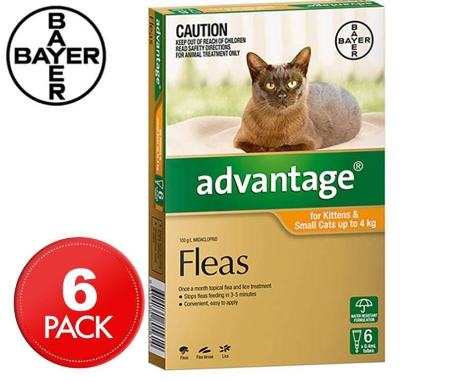 Адвантейдж для кошек: состав и форма выпуска, инструкция по применению