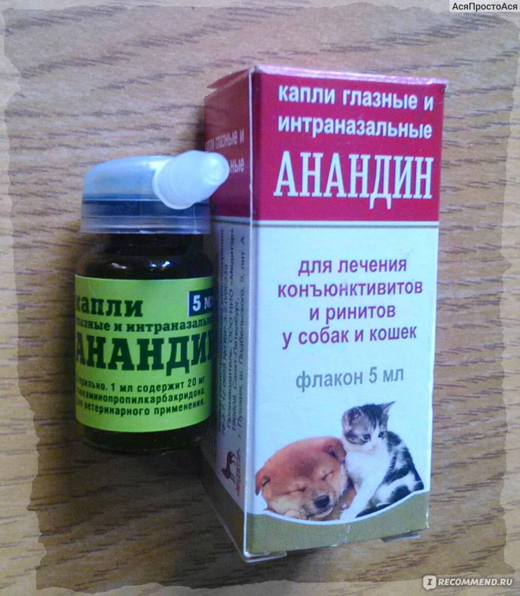 Анандин для кошек, инструкция по применению, применение для собак