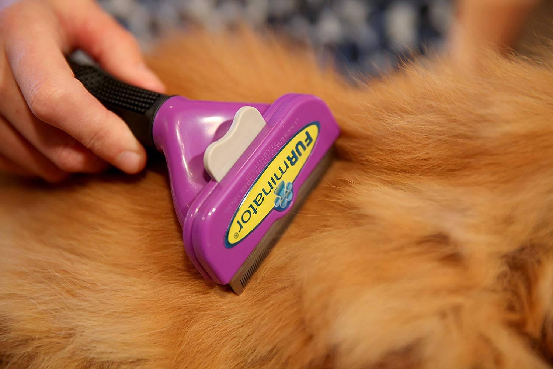 Фурминатор это расчёска с электрическим принципом действия для кошек и других домашних животных
