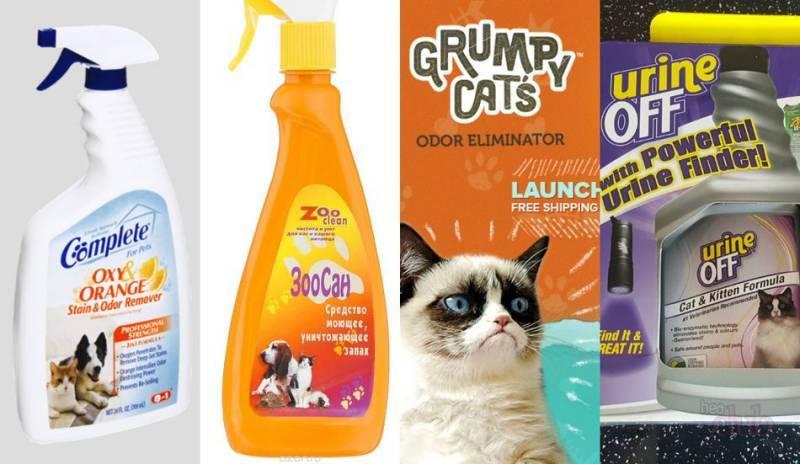 Как и чем навсегда вывести запах кошачьей мочи в домашних условиях
