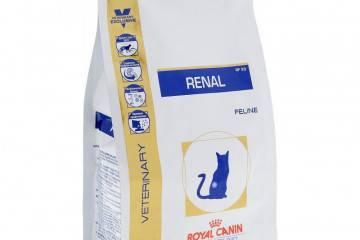 Уринари для кошек – состав продукта и чем можно кормить животное после отмены лечения?