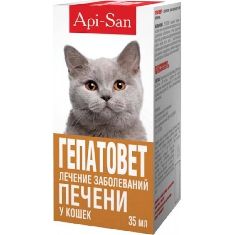 Гепатовет для кошек: инструкция по применению, состав