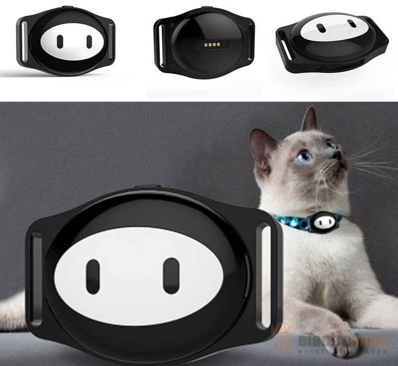 Ошейники для кошек с gps: как выбрать трекер, особенности функционирования маячка, отзывы владельцев