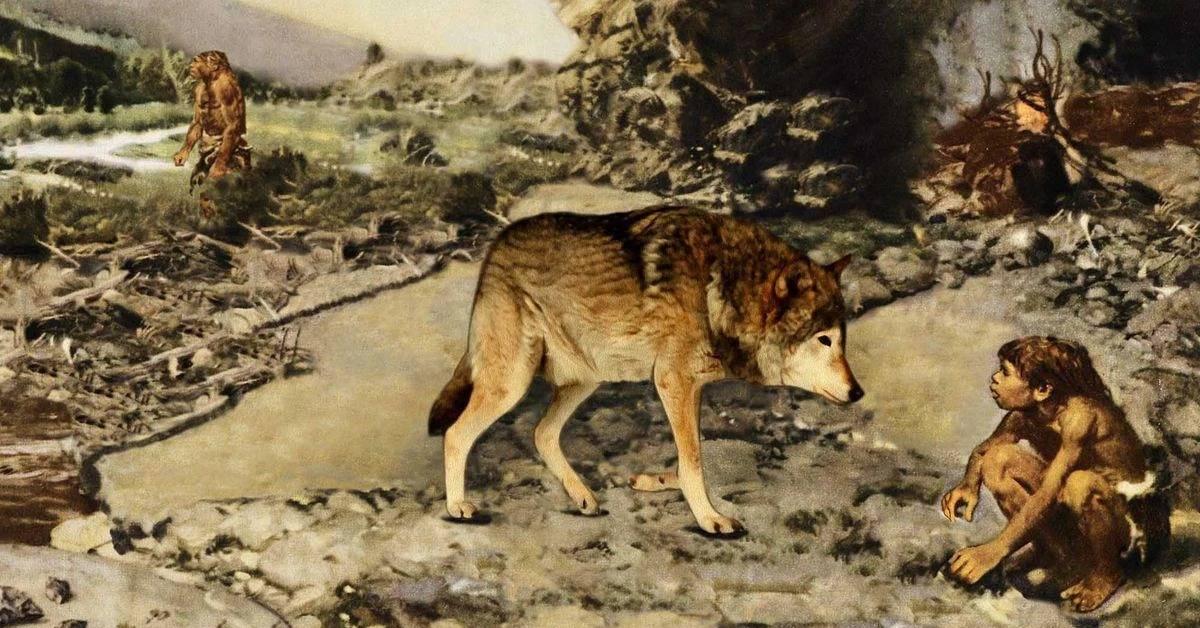 Откуда взялись первые собаки?