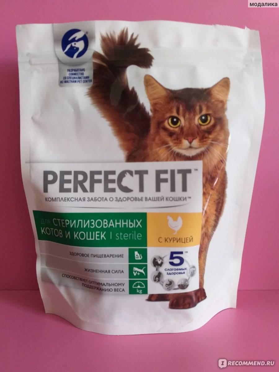 Корм«перфект фит» для кошек: может ли продукт стать основой рациона домашнего питомца