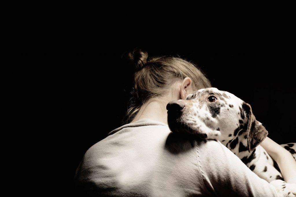 Как пережить смерть кота и смириться: советы психолога