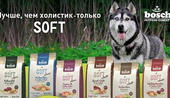 Корм для мелких собак бош состав