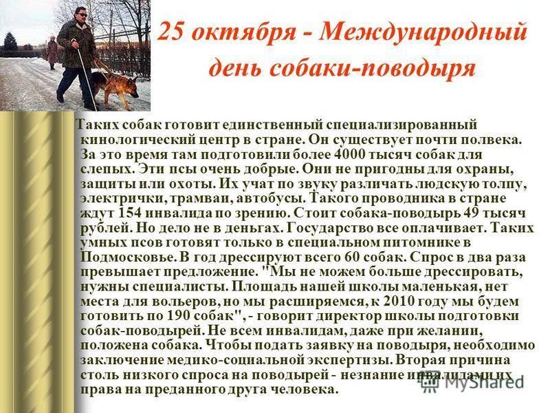 Праздник целителей душ: какого числа отмечают день психолога в россии