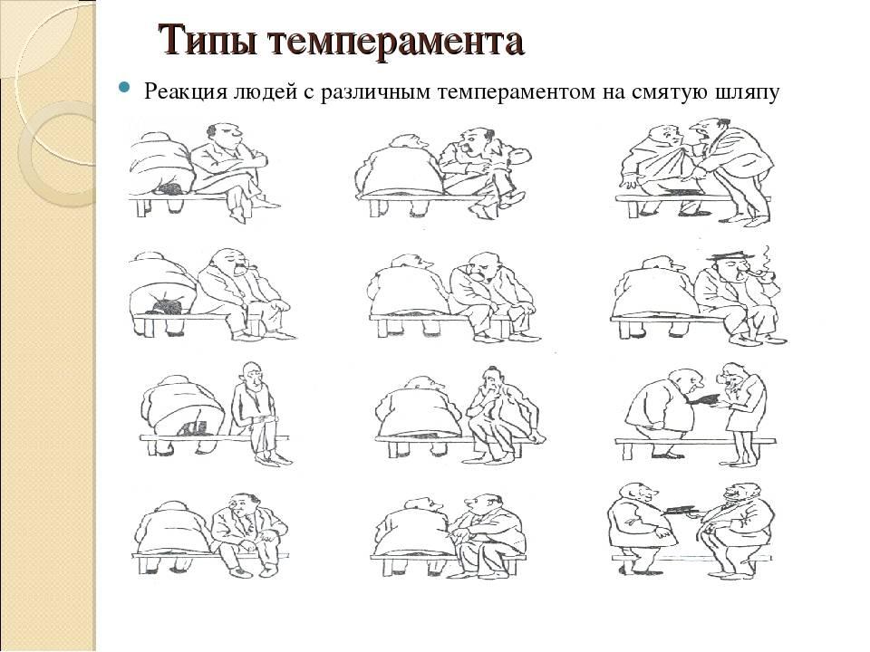 Бульмастиф, характеристика породы, правила содержания и воспитания