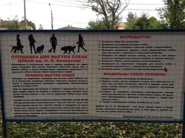 Правила выгула собак по новому закону (2019) о содержании животных | юридические советы