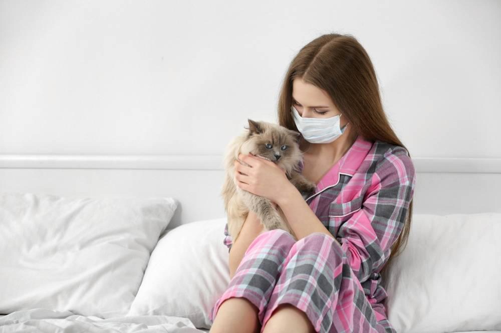 Какое животное завести аллергику и астматику: самые гипоаллергенные варианты