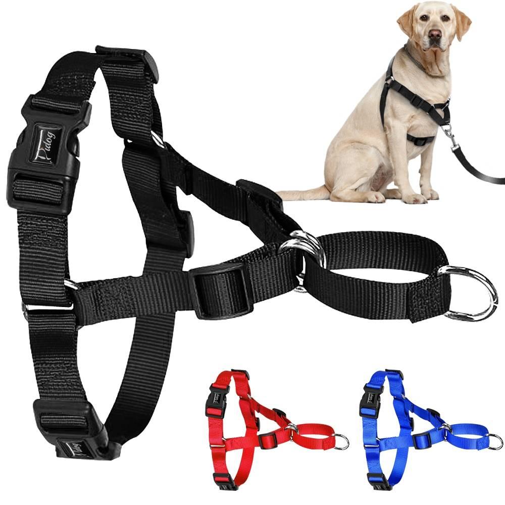 Намордник для собак — советы как выбрать и какие лучше купить намордники для собак (110 фото)