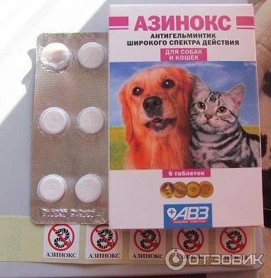 Азинокс плюс для собак: как давать таблетки, инструкция по применению, дозировка, возможные побочные эффекты
