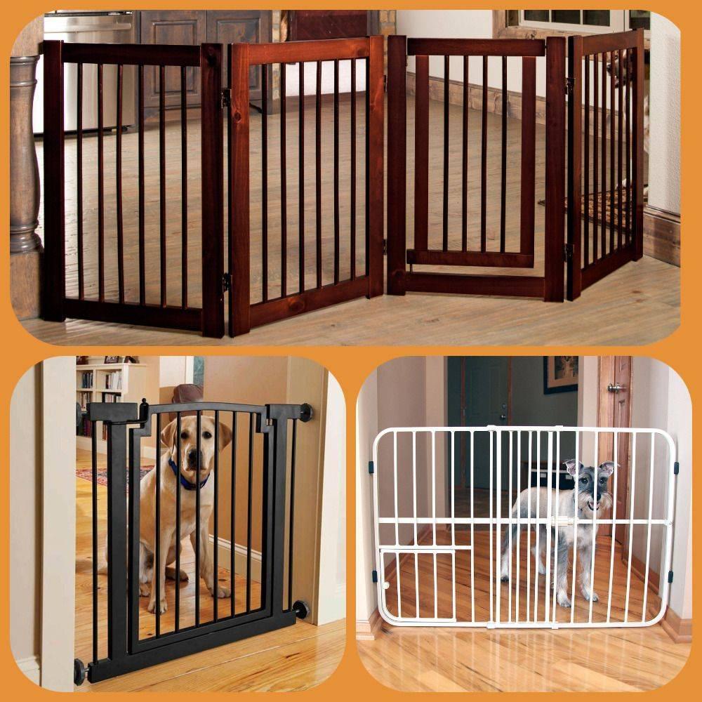Какие барьеры для собак