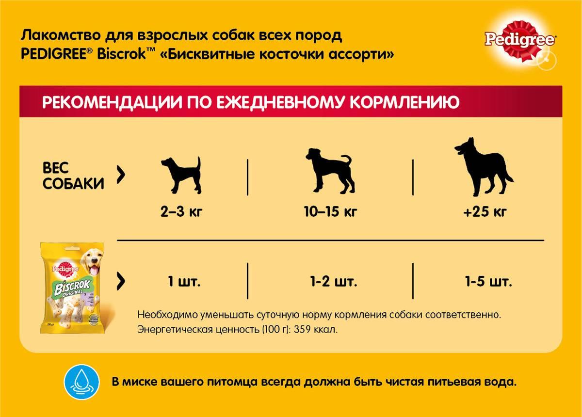 Кости для собак: можно ли давать щенкам и какие