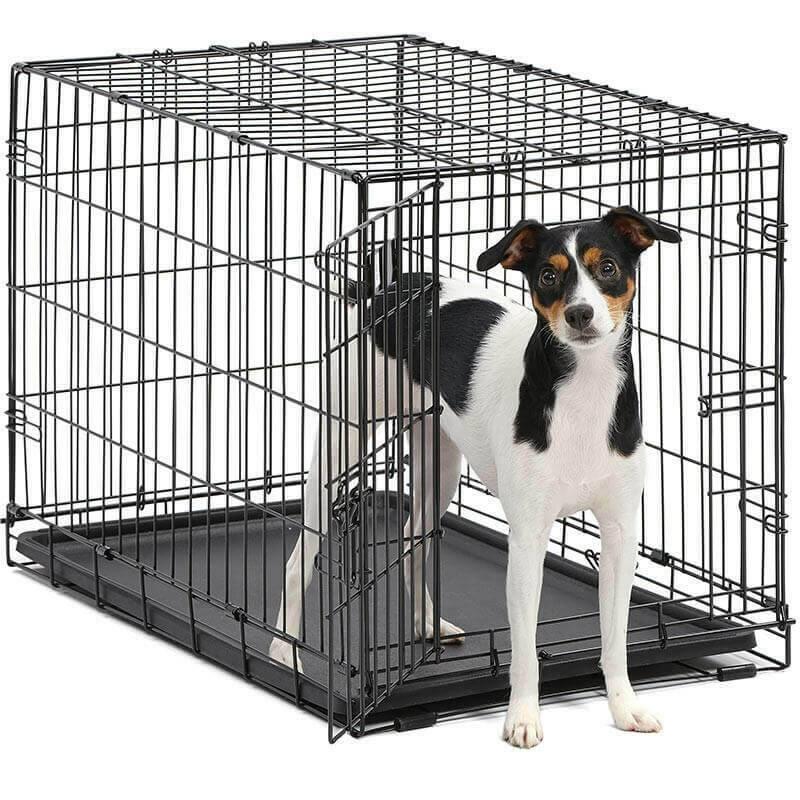 Клетки для собак в квартире: как приучить щенка, выбор и размеры