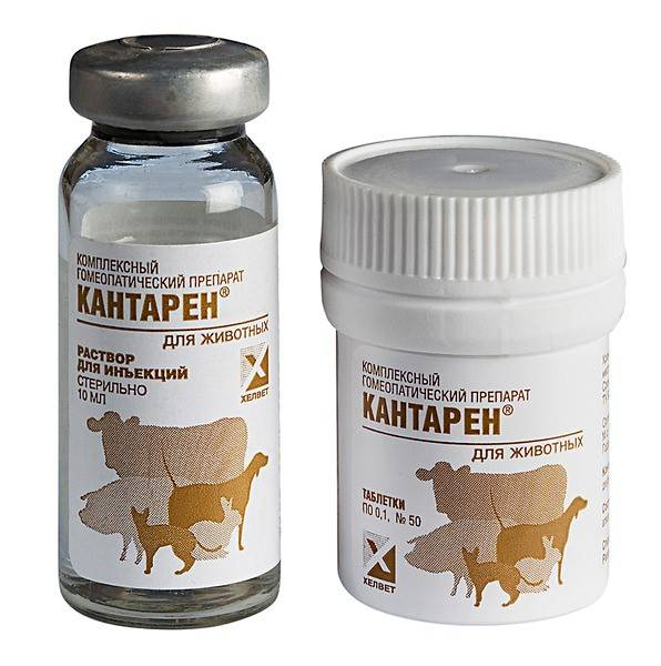 Препарат кантарен для кошек. инструкция по применению, отзывы - твой питомец