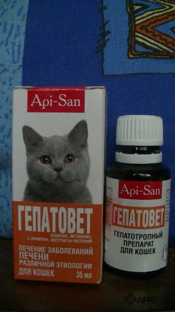 Слабительное для кошек: как и когда применять, как действует, виды препаратов и народных средств, отзывы